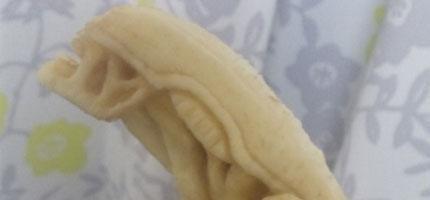 香蕉雕刻藝術