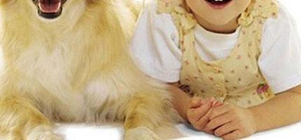 聽說狗狗會慢慢跟主人長得越來越像。這就是20個超好笑的證據!