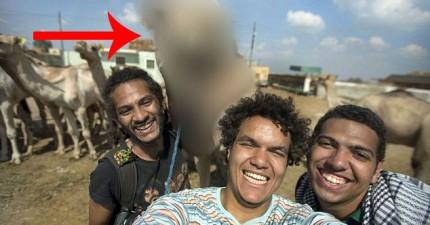 他把這張在埃及跟駱駝拍的照片上傳後就去睡覺了。隔天起來,這張照片已經在各大媒體網站上瘋傳。