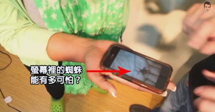 這個iPhone的蜘蛛魔法把戲到最後會讓你嚇到跳起來。