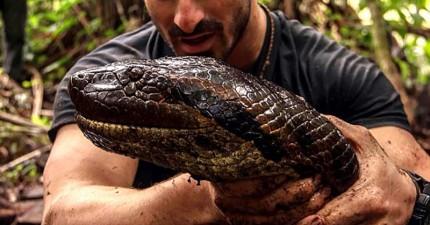 狂人搏命讓雨林大蟒蛇把自己活活吞下,結果讓全世界超失望!