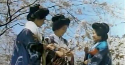 這支1930年的影片會讓你看到當時京都女性要盤起髮型有多麼恐怖麻煩!