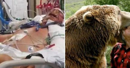 獵人遭到母熊攻擊「臉部被毀爛」,撿回「鼻子嘴巴重建」連吃飯也要從頭學