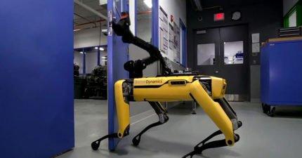 機器人又進化!它學會的心技巧讓網友嚇到開始擔心人類的未來...