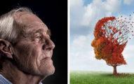 「老年失智」有救了?醫界找到治療重點 專家:明年可有突破性實驗結果!