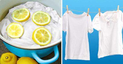 白衣穿一穿就「變黃」?白衣控不可不知的「4個洗衣小知識」 洗衣劑要選對!