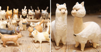 台灣師傅手工木雕「貓科動物大集合」全是一體成形!扭蛋迷秒變心:竟然有石虎寶寶~