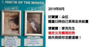 水族館選出當月「最頑皮vs最乖巧」企鵝 競選事蹟太爆笑...牠「偷拔飼育員的腿毛」