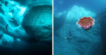 11張任何杯子都裝不了的「巨大冰塊」 下面大到連鐵達尼號都怕!