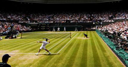 二戰後首度取消!百年「溫布頓網球錦標賽」宣布:2020不辦了