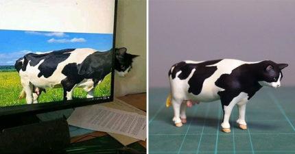 公仔達人把「錯視乳牛貓」3D化 「大餒餒」被笑翻:比頭大!