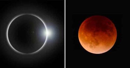 天狗即將「吃日月Buffet」 超罕見「上帝戒指」錯過再等200年!