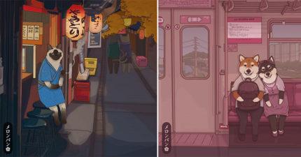 如果毛孩都是「日本人」的超萌日常 深夜「喵星酒吧」:好想來生當貓!