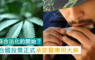 為大麻除罪化鋪路?聯合國投票正式承認「藥用大麻」