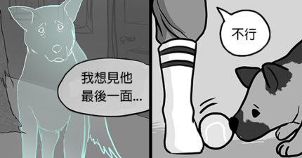狗狗死後靈魂回去找主人!看到他養了「新的小狗」漫畫惹哭網友