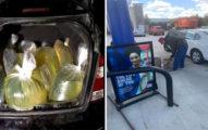 外帶在裝湯?美國突瘋搶汽油 「塑膠袋、紙箱」網嚇愣